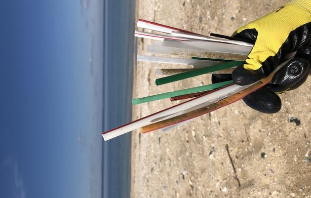 Beach Clean-up on the North Fork of Long Island