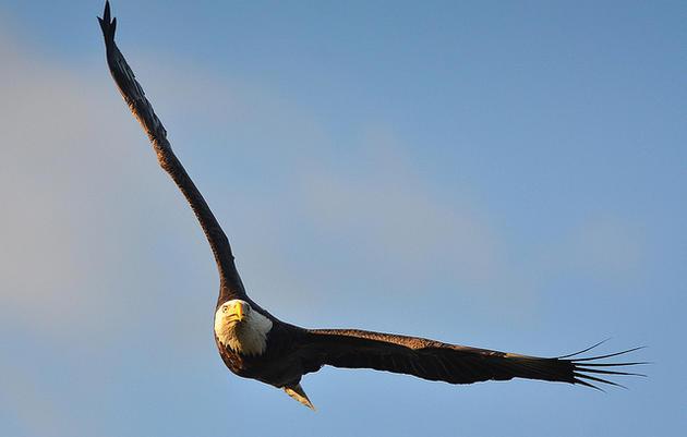 Montezuma Audubon Center