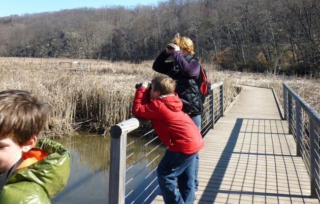 A Guide to Birding with Binoculars