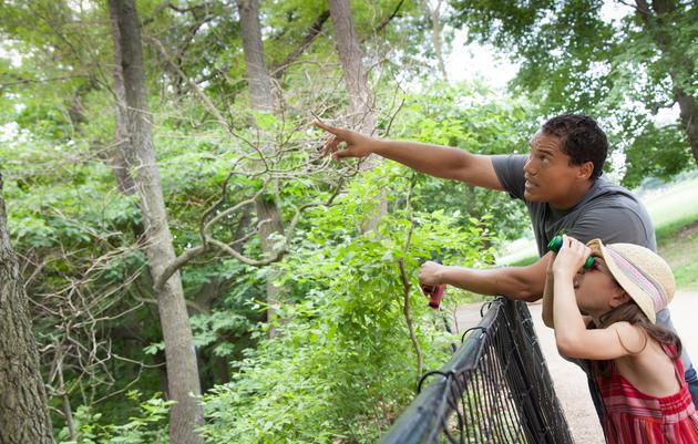Prospect Park Audubon Center