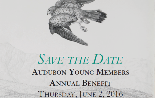 2016 Young Members Benefit