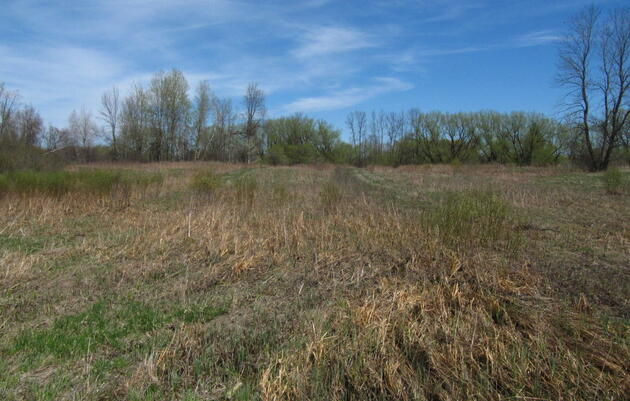 Putting Working Lands to Work for Birds and People
