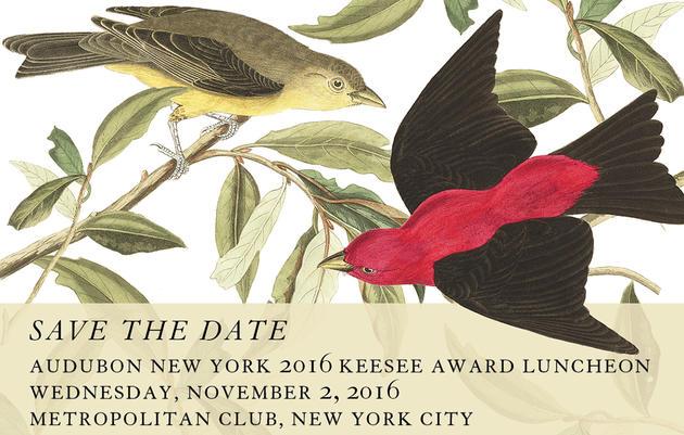 2016 Keesee Award Luncheon