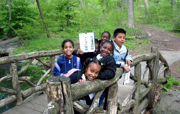 Audubon New York's 'For the Birds!' Environmental Education Program