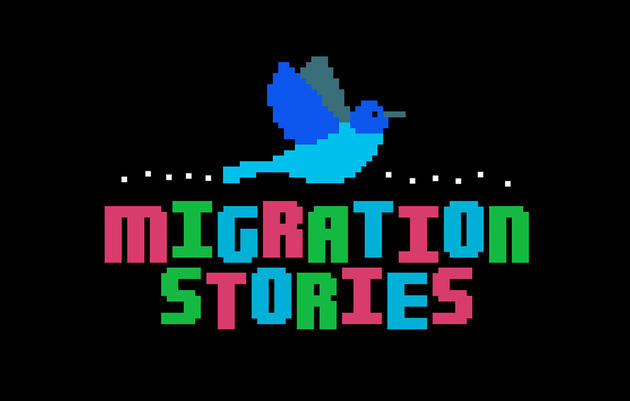 Game: Follow a Bird's Migration Story