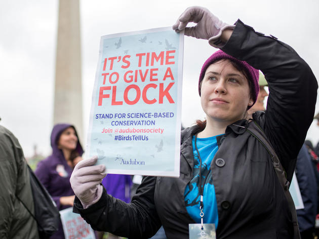 From Coast to Coast, Audubon Stood Up for Birds at the March for Science