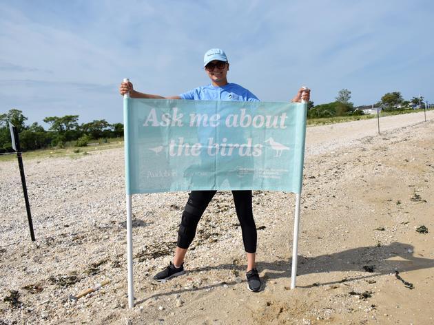 New Jones Beach, Sunken Meadow Volunteer Program Launches
