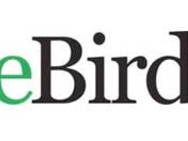 Where can I report a unique bird sighting? | Audubon New York