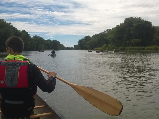 Clearing invasive species from waterways, one handful at a time