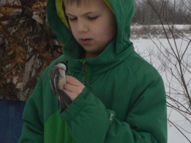 Bird-banding event at Montezuma Audubon Center includes fun, education