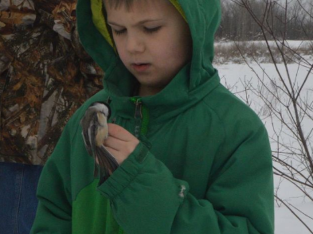 Bird-banding event at Montezuma Audubon Center includes fun, education