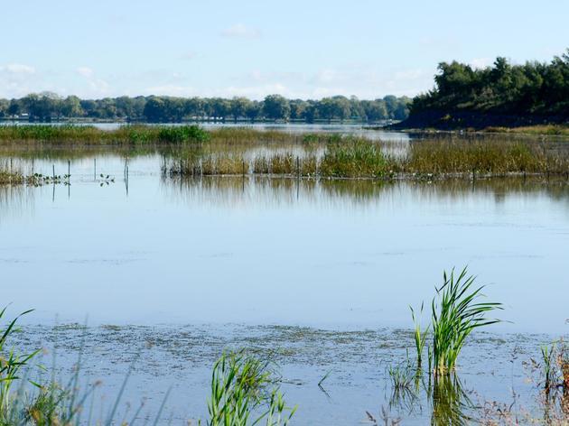 Onondaga Lake Paddling
