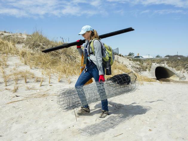 Women Protecting Wildlife