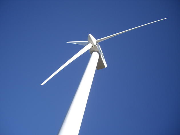 NYSERDA's Proposed Wind Energy Area Draws Comments from Audubon New York