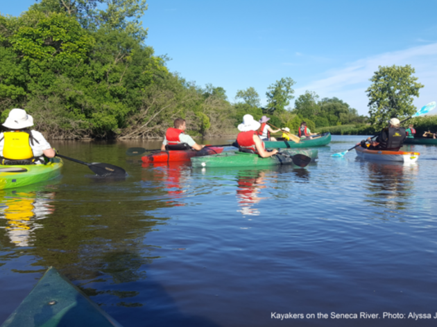 Birding and Boating: Seneca River