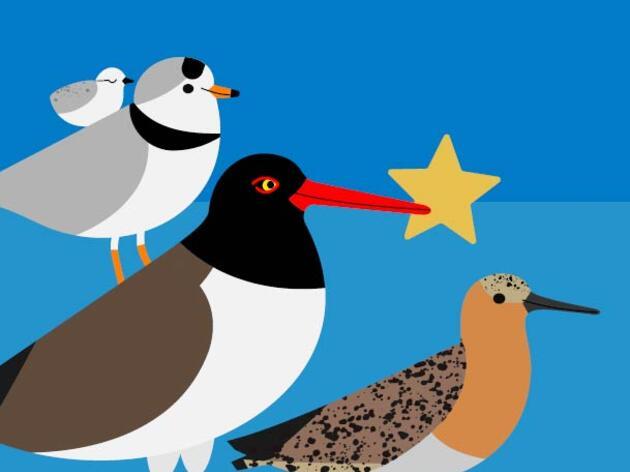 """Audubon Celebrates """"Share The Shore"""" Award Winners"""