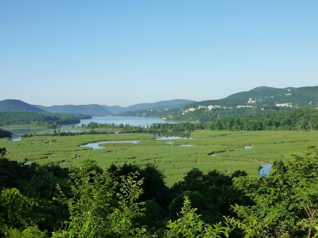Audubon New York Urges US Coast Guard to reconsider Hudson River Anchorage Plan