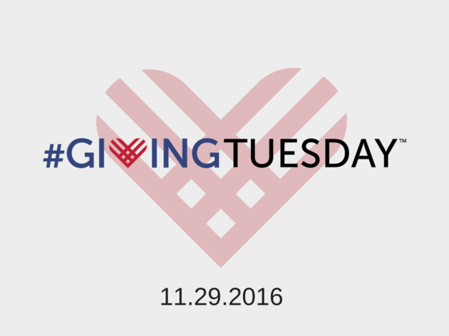 Join Audubon New York for #GivingTuesday
