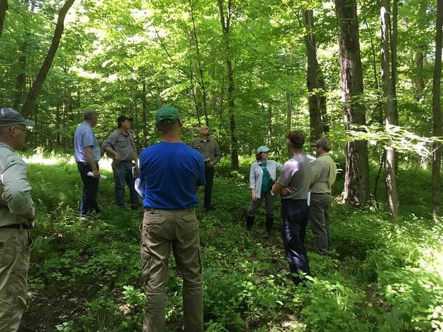 Audubon Forester Training and Endorsement Program