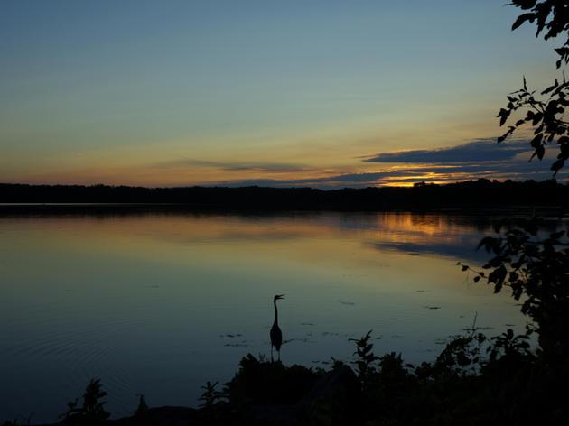 Spotlight on Onondaga Lake