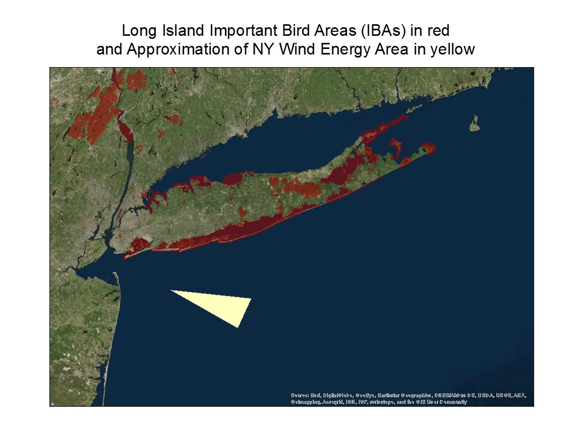 udubon_long_island_ibas_and_proposed_wind_energy_area_12.15.16.jpg