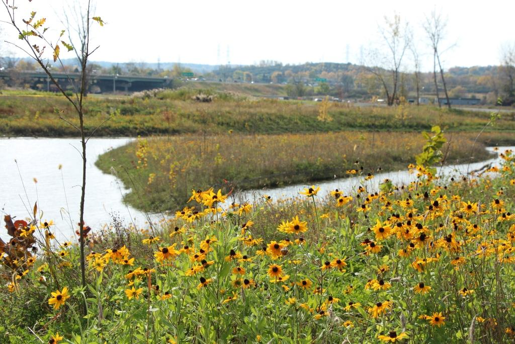 Onondaga Lake Conservation Corps Nine Mile Creek Restoration